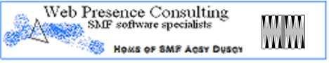 Web Presence Consulting